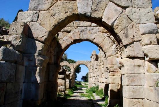 Le rovine greche - Tindari (4885 clic)