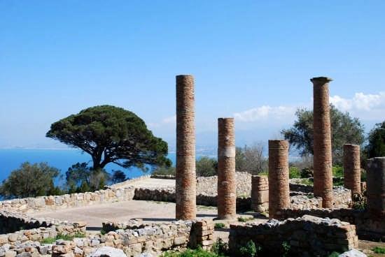 Le rovine greche - Tindari (7327 clic)