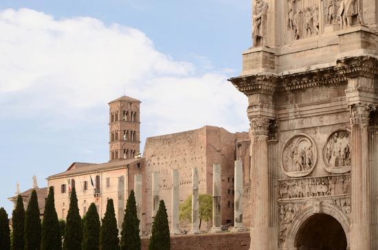 Palatino - Roma (1549 clic)