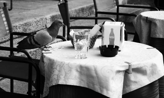 Colazione da Tiffany - Bologna (2246 clic)