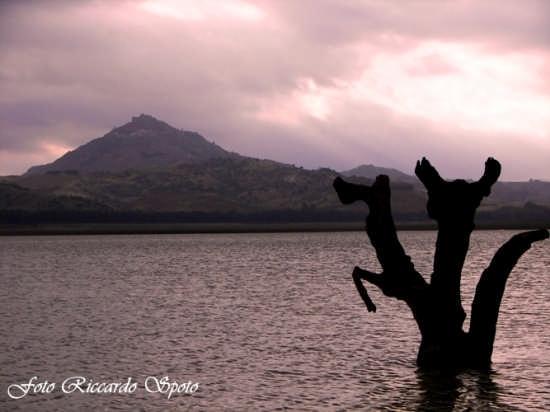 Lago di Pozzillo, Regalbuto (3660 clic)