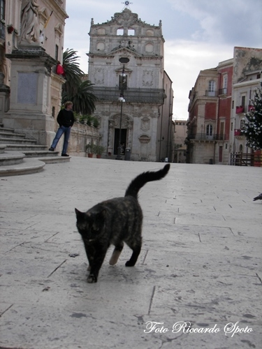Siracusa Piazza Duomo (2214 clic)