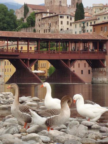 Bassano del Grappa (2000 clic)