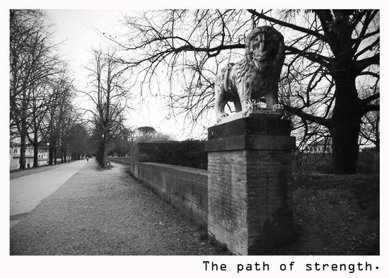 The path of strenght. - Lucca (2044 clic)