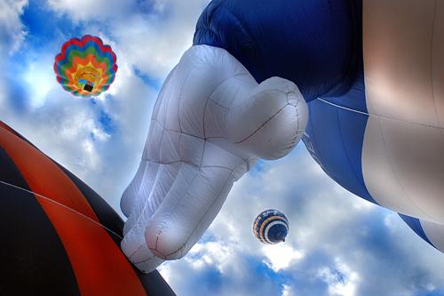 Sogno di libertà! - FERRARA - inserita il 26-May-11