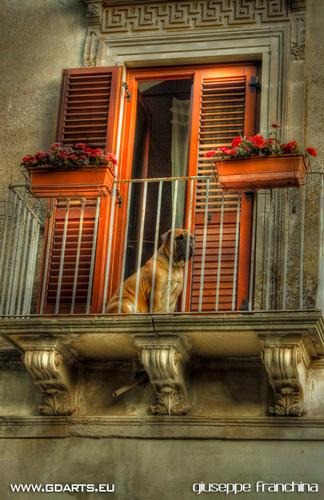 Waiting For - Ragusa (3285 clic)