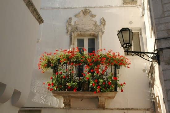 Balcone con gerani - Locorotondo (4804 clic)