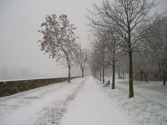 le mura sotto la neve - Ferrara (11024 clic)