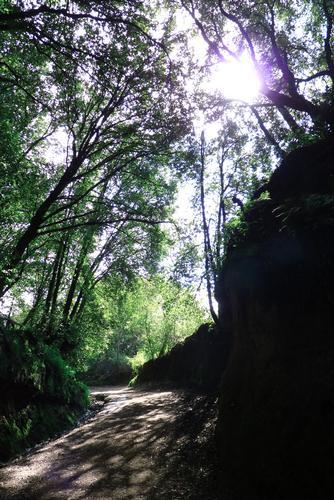 Sentieri illuninati - Roma (2216 clic)