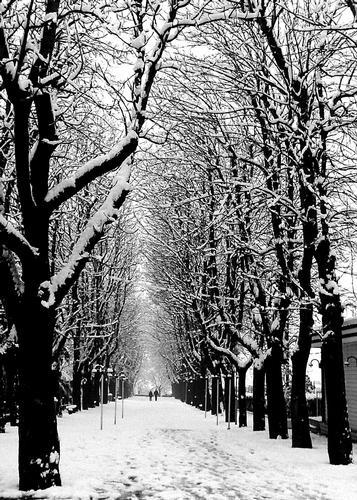 La neve  - Brescia (1858 clic)