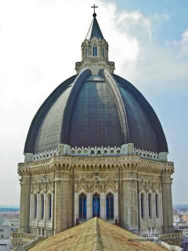 Cupola Duomo Tonti - Cerignola (2830 clic)