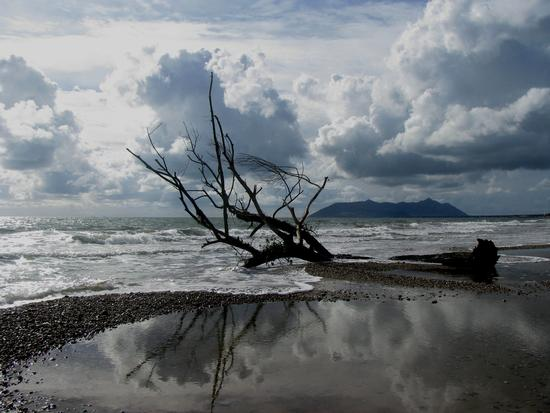Dopo la tempesta - Terracina (2525 clic)