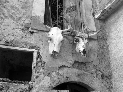 I due Guardiani - Castel del monte (1427 clic)