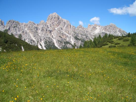 Parco Nazionale Dolomiti Bellunesi - Forno di zoldo (1932 clic)