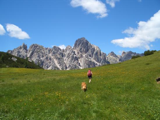 trekking nel PNDB - Forno di zoldo (2195 clic)