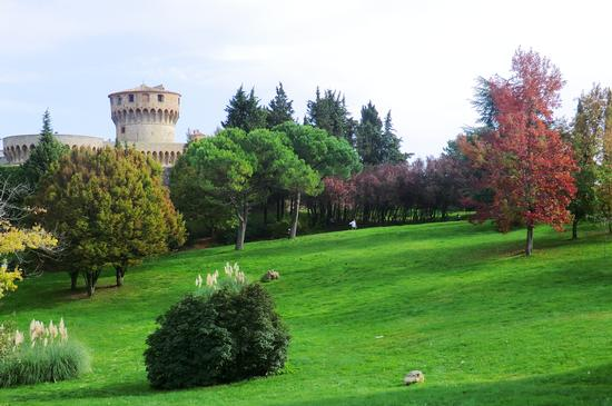 il giardino della fortezza - Volterra (1528 clic)