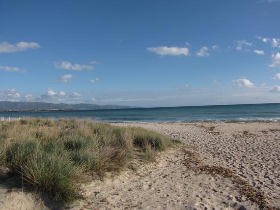 spiaggia di Quartu - Quartu sant'elena (2179 clic)