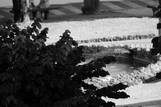 in piazza - PISTOIA - inserita il 14-Jul-11