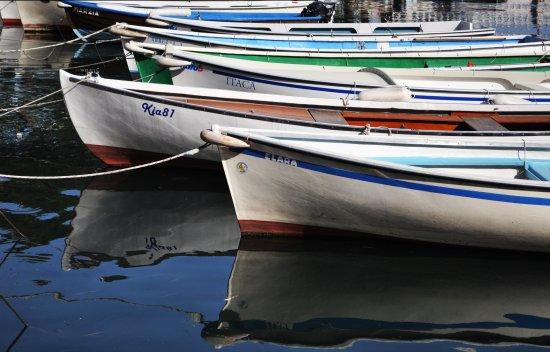 Fidate compagne di viaggio - Desenzano del garda (2411 clic)
