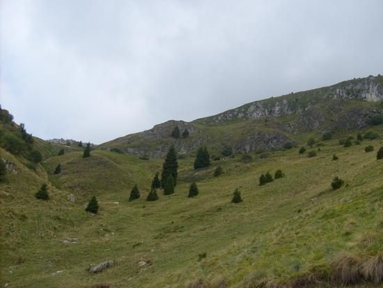 Monte Guglielmo - Zone (1486 clic)