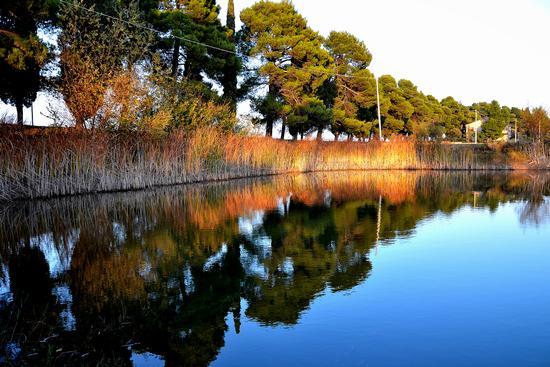 Lago di Schito - Treia (2959 clic)