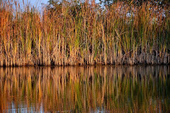 Lago di Schito  - Treia (2301 clic)