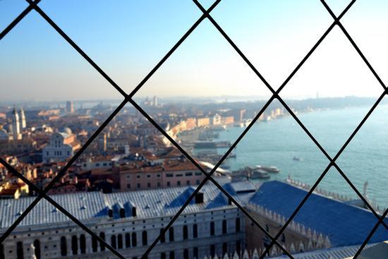 la rete - Venezia (2304 clic)