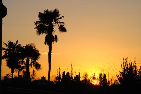 tramonto  (540 clic)