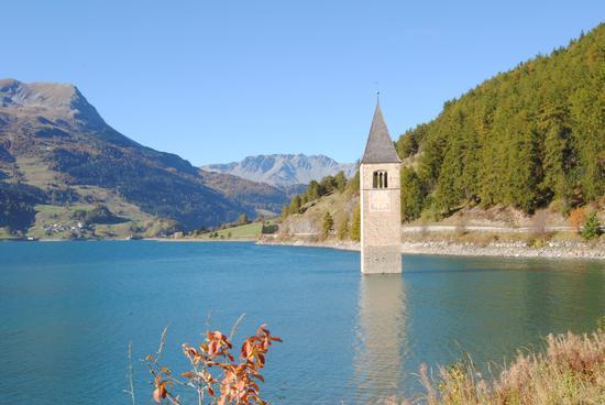 Il campanile sul lago resia  - Curon venosta (830 clic)