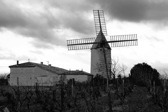 Le veint de Cognac (808 clic)