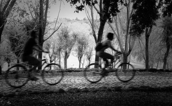 bici a villa Pamphili - Roma (1506 clic)