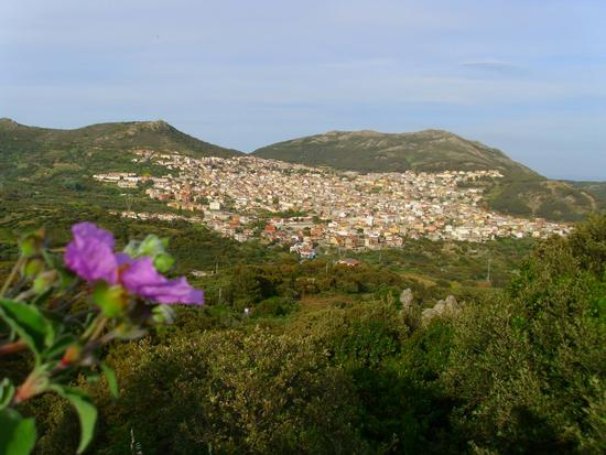 Arbus panorama (1262 clic)