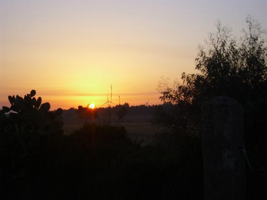 Alba Campidanese (202 clic)