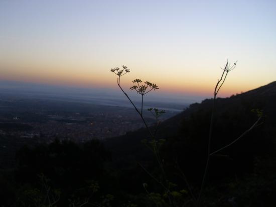 Guspini alla'alba (710 clic)