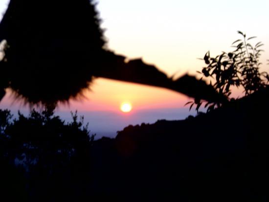 Castagno all'alba - ARBUS - inserita il 16-Sep-11