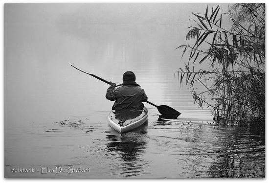nel silenzio della natura - Monzambano (2918 clic)