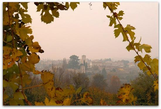 Castellaro Lagusello - Monzambano (2297 clic)