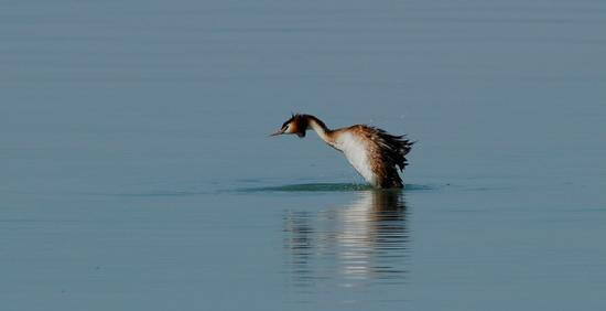 umbria lago trasimeno (515 clic)