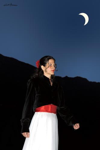 camminando al chiaro di luna - Rovereto (2313 clic)