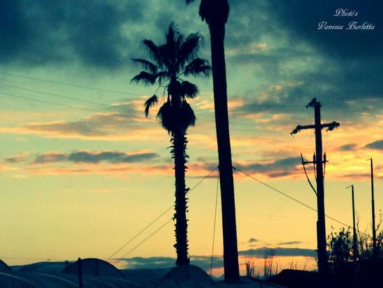 cielo,natura. (357 clic)
