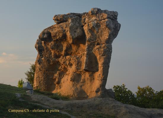 Elefante di pietra - Sila (575 clic)