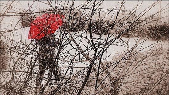 Ombra rossa - Rimini (580 clic)