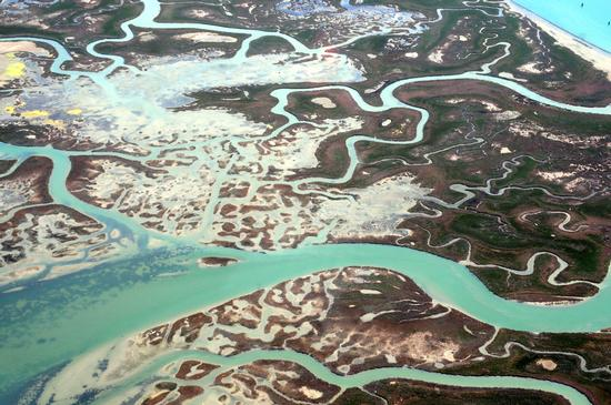Laguna Veneta - BIBIONE - inserita il 02-Sep-11