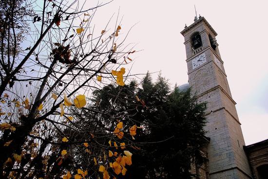 Colori caldi - Trescore balneario (1101 clic)
