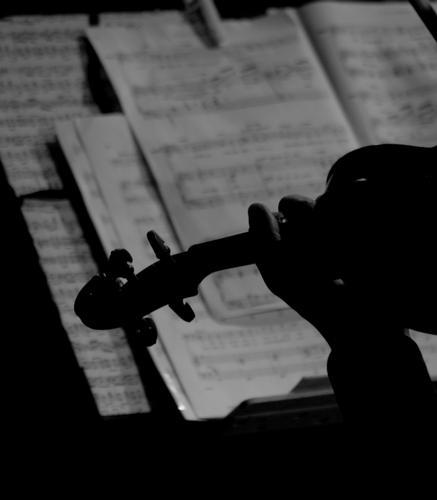 Contrasto musicale... - Trescore balneario (1928 clic)
