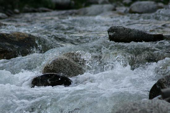 Il fiume Chiaro - Mammola (2185 clic)