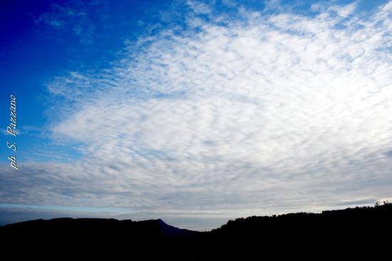 Monte Scifo - Mammola (1615 clic)