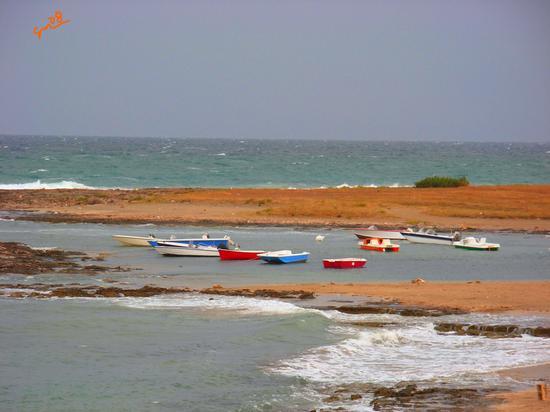 Barche pugliesi - Carovigno (1416 clic)