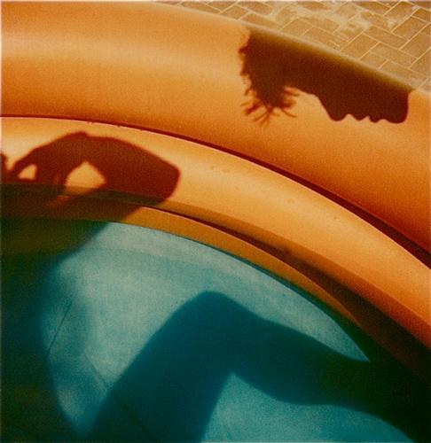 Polaroid SX 70 di Augusto De Luca -2 (443 clic)