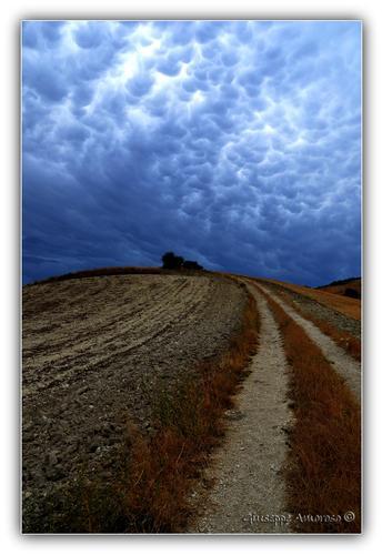 a un passo dal cielo..... - Foggia (2135 clic)